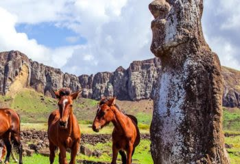 Wild horses stand near Easter Island statue on a Chile vacation