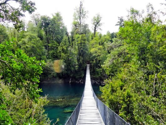 Bridge over river in Huilo-Huilo Reserve