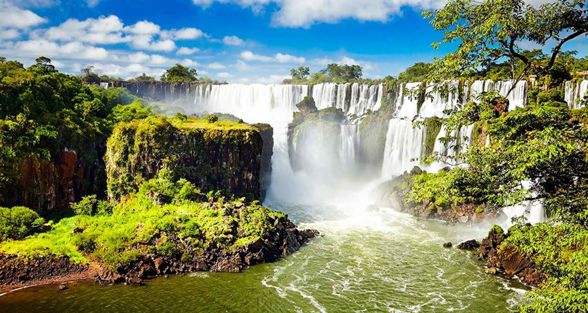 View past trees of Iguazu Falls