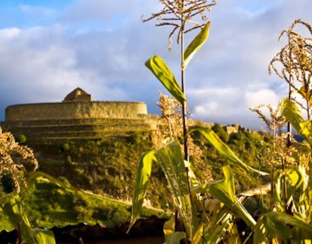 Corn in foreground and building in Ingapirca, Peru