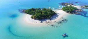 island in brazil