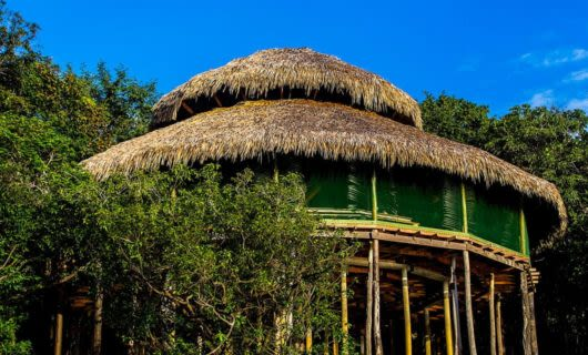 Straw-thatched tower of Juma Amazon Lodge