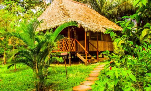 Small hut in South America jungle