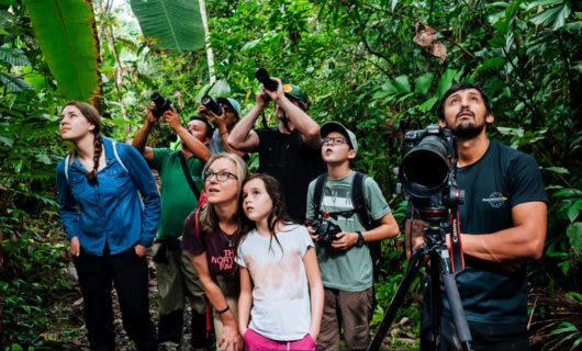Tour group on jungle path with cameras