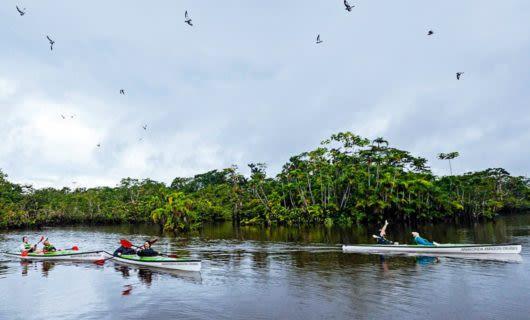 Three kayaks on the Amazon river