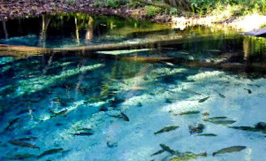 Lagoa Azul in Brazil