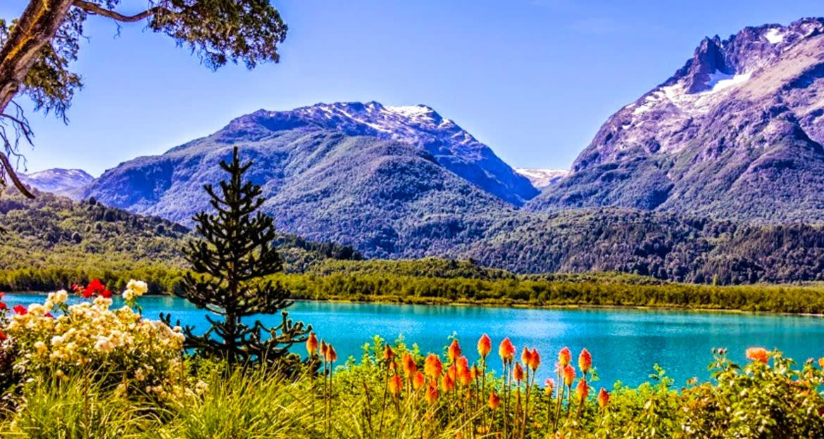 Lake and mountains behind foreground of flowers