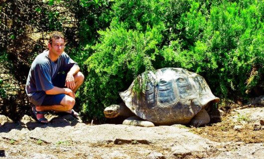 Man kneels next to giant tortoise