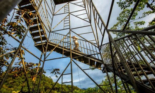 Person climbs large outdoor staircase at Mashpi Lodge