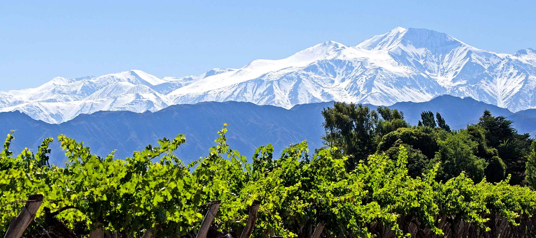 View of mountains across Mendoza vineyard