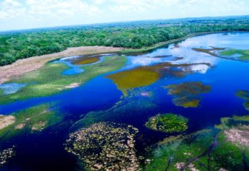 Aerial view of Pantanal Wetlands