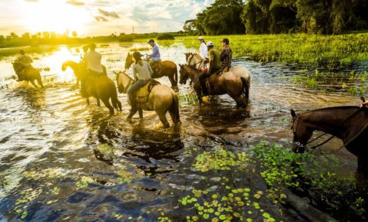 Travelers ride horseback on a tour the Pantanal wetlands