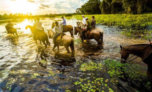Travelers ride horseback on a tour the Pantanal wetlands