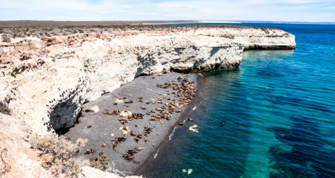 Rocky coast and beach of Puerto Madryn