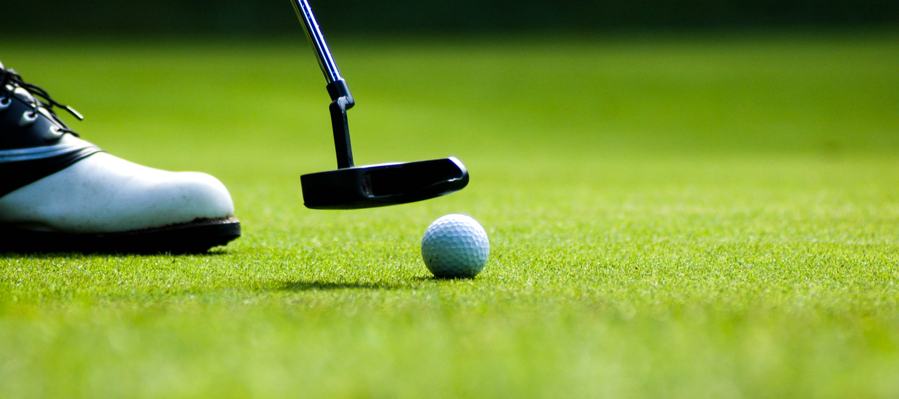 Close up of putting on golf green