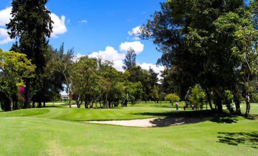 Green of golf club at San Andres