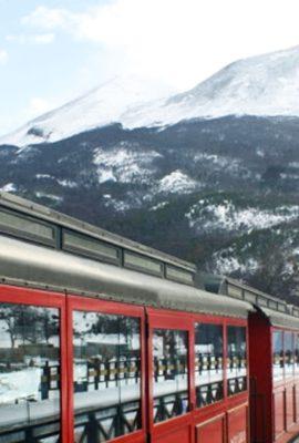 Train in front of Tierra del Fuego mountain