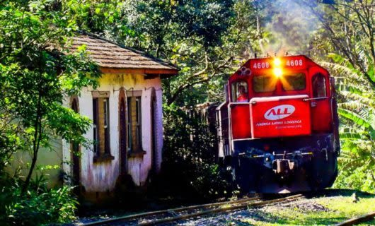 Red train on rainforest track near building