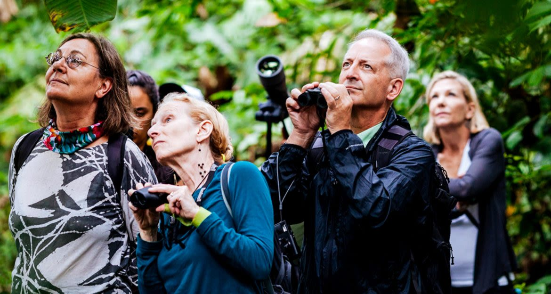Group of travelers use binoculars in jungle