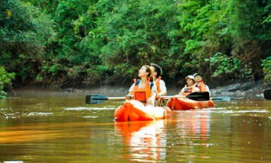 Travelers paddle orange kayaks down river