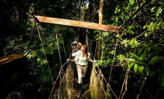 Travelers walk across rope bridge in jungle