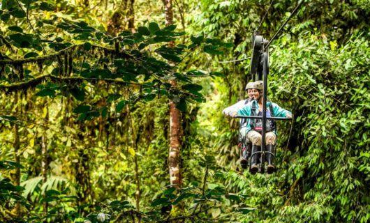 Travelers ride Sky Bike through jungle