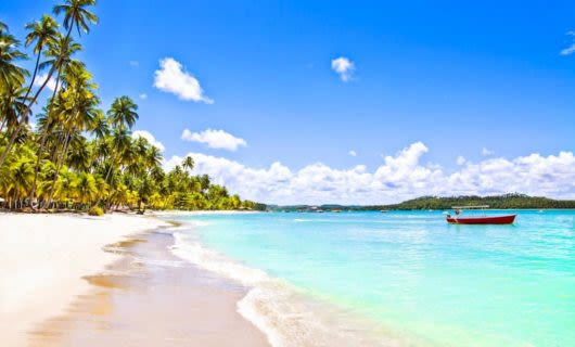 Tropical Brazil beach