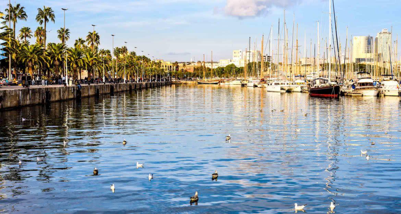Boats moored in Uruguay harbor