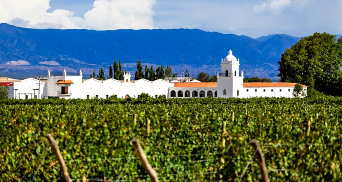 White building in South America vineyard