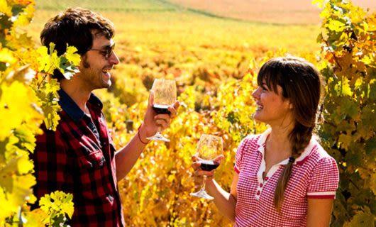Two people drink wine in vineyards