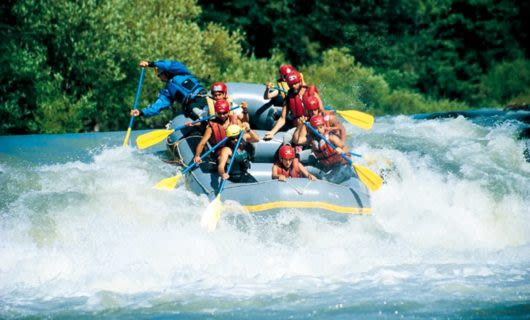 Group paddles white water raft down river