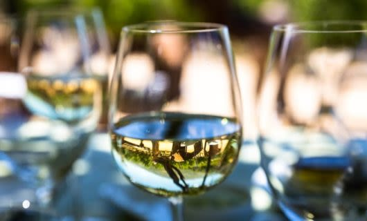 White wine in glasses