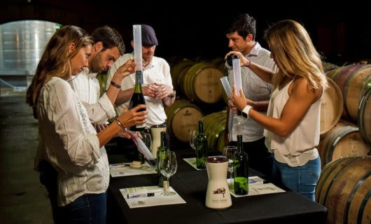 Group participates in wine tour activity