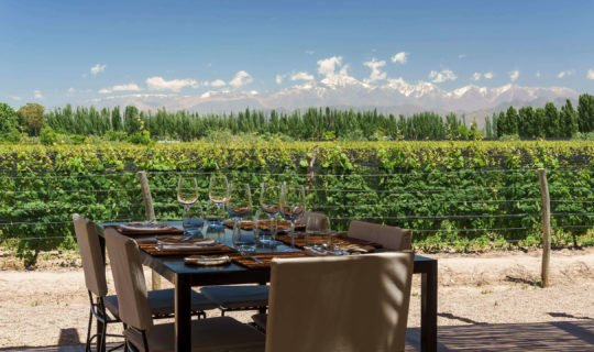 Outdoor eating area at beautiful winery during Mendoza tour