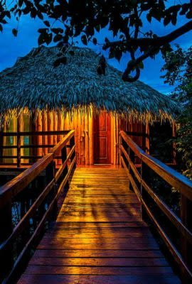 Path through trees to lit amazon jungle lodge bungalow at night