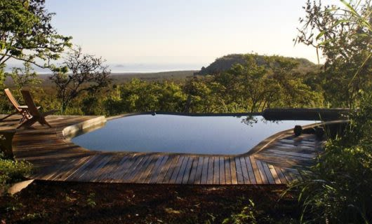 View of Galapagos forest across deck of pool