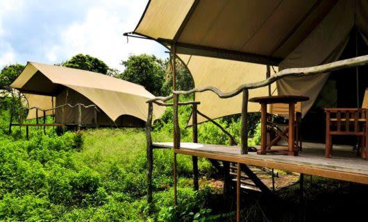 Two safari tents in Galapagos