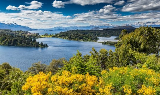 chilel-lake-district-with-yellow-wildflowers