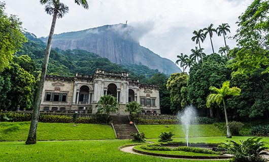 beautiful-botanical-gardens-in-rio-on-cloudy-day