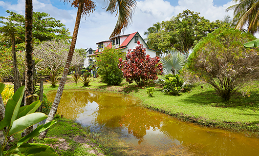 old-beautiful-home-near-small-creek-and-palm-trees