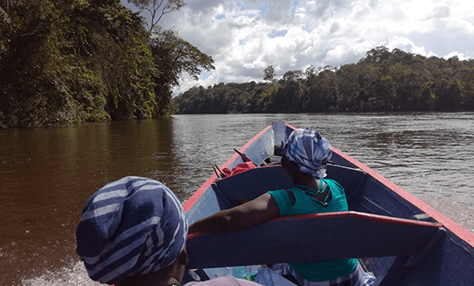 people-on-boat-riding-through-river-and-jungle-area