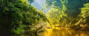 Amazon River at Sunset