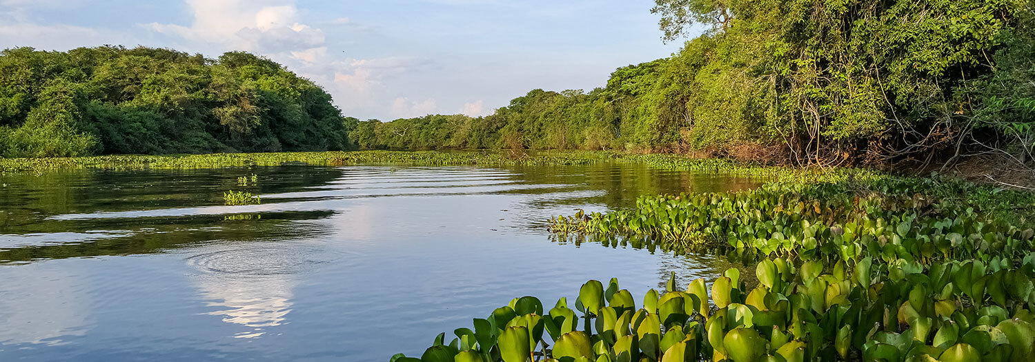 Best Time To Visit Paraguay Southamerica Travel