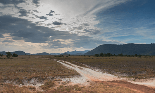 beautiful dry savannah and forrest region of Guyana