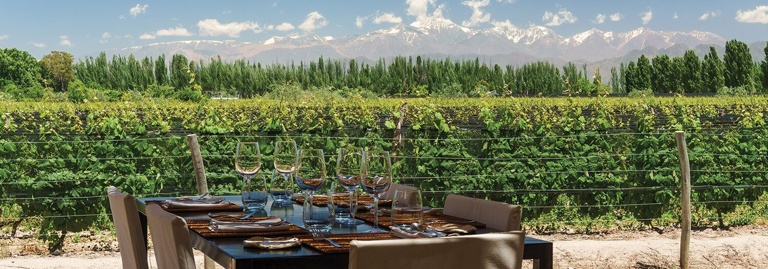 WIne Table in Mendoza Argentina in the Spring