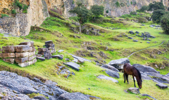South America tour to ancient ruins of Kuelap in Peru
