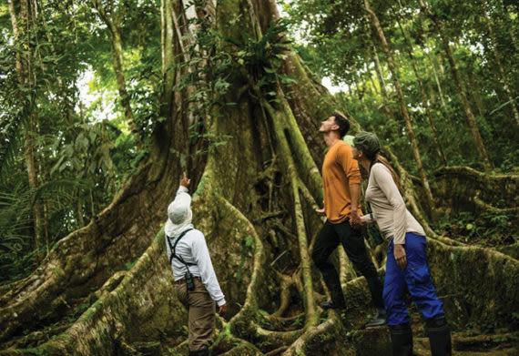 couple trekking through the Amazon Rainforest