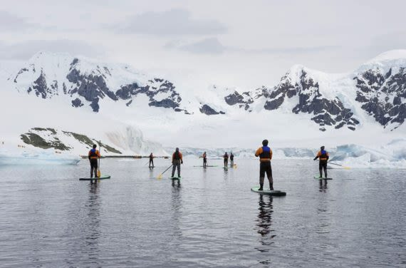 paddle boarders in icy bay