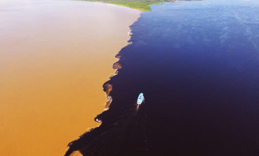 Aerial view of the meeting of the waters in the Amazon