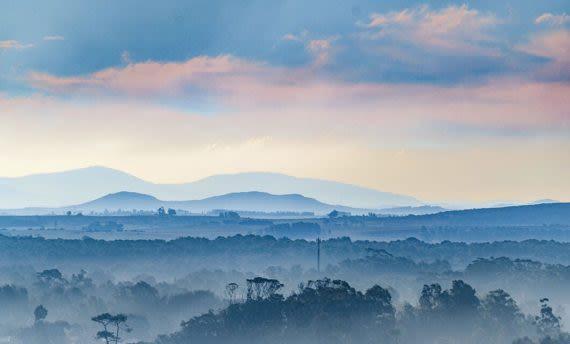 wilderness of uruguay